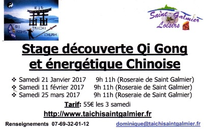 StagesQi Gong2017Site2